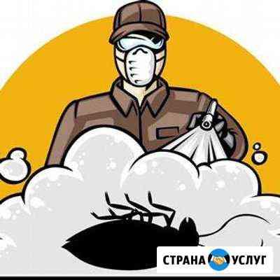 Дезинсекция,дератизация Краснодар
