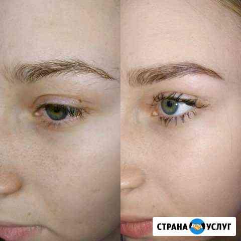 Окрашивание и коррекция бровей хной или краской Нижний Новгород