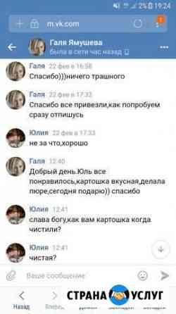 Продаем отличную картошку и овощи Нижний Новгород