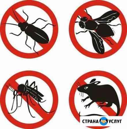 Обработка от вредителей,дератизация,дезинфекция Рыбинск