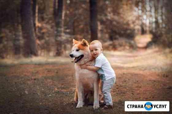 Фотосессия с собакой Набережные Челны