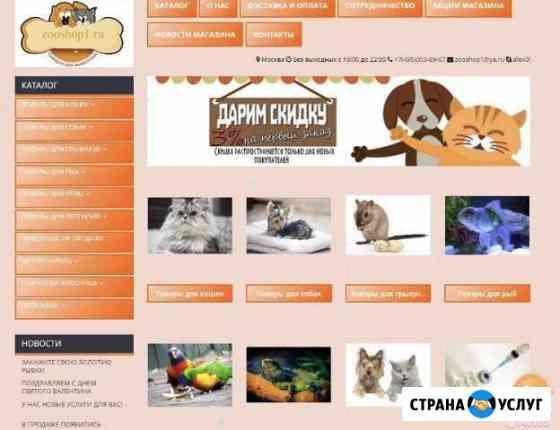 Сайт на заказ Москва