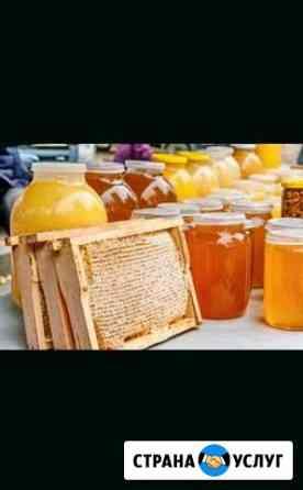 Цветочный мёд с собственной пасеки Заинск
