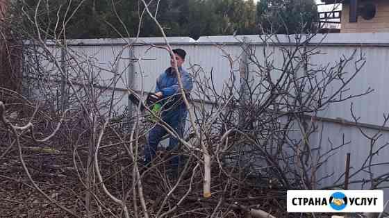 Спил деревьев вывоз веток, уборка участков Краснодар