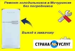 Ремонт холодильников в Мичуринске Мичуринск