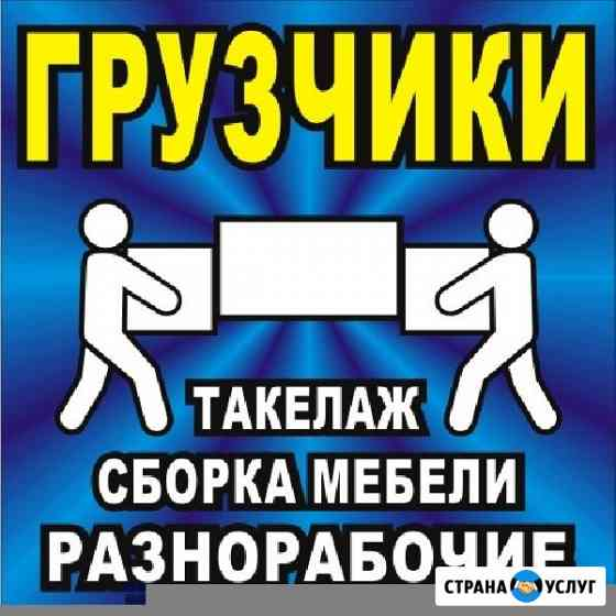 Грузчики Вологда