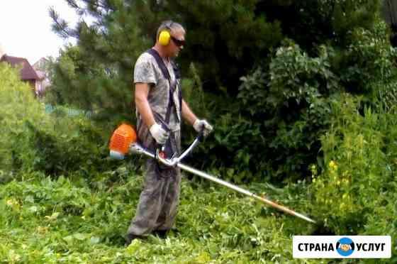 Покос травы любой сложности, расчистка участка Егорьевск