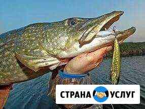 Рыбалка и охота в раскатах дельты Волги Марфино