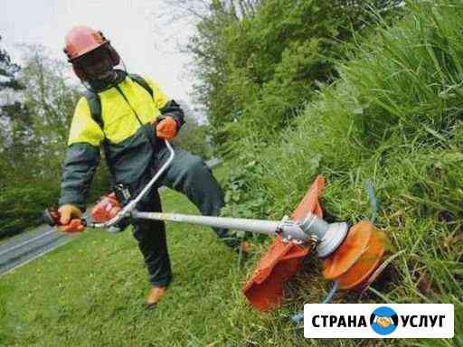 Скашу траву Черногорск