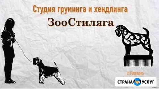 Стрижка и дрессировка животных Рязань