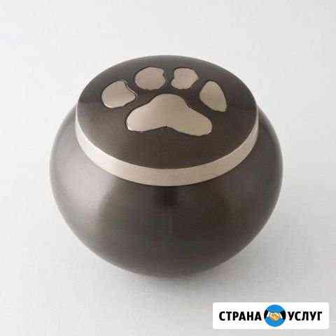 Ритуальные услуги для домашних животных Мурманск