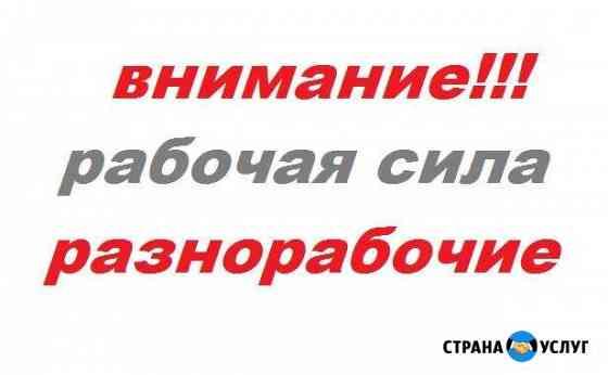 Разнорабочие Петрозаводск