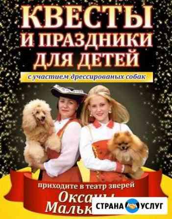 Шоу дрессированных собак на ваш праздник Курган