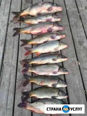 Рыбалка в Астрахани Два дома для Вас Камызяк