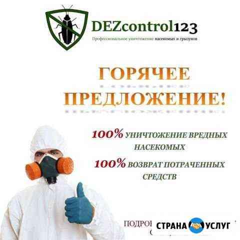 Уничтожение тараканов, клопов и.т.д. Дезинсекция Шадринск