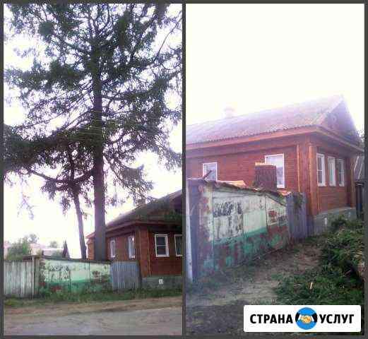 Спилим любое дерево круглый год Кострома