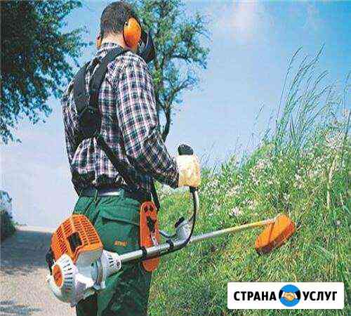 Покос травы Кострома