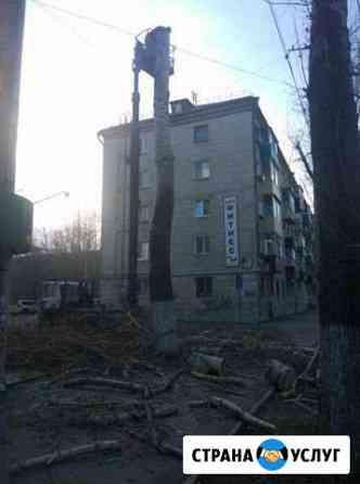 Срез и подрезка деревьев Комсомольск-на-Амуре