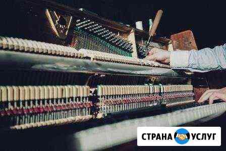 Настройщик пианино, рояля Рязань