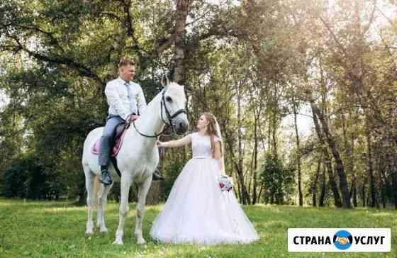 Фотограф (свадебный, семейный) Абакан