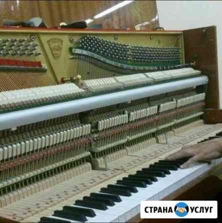 Настройка фортепиано и роялей Черкесск