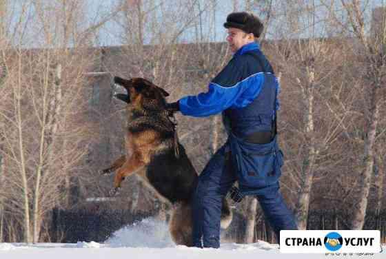 Дрессировка собак Омск - оцссс Омск