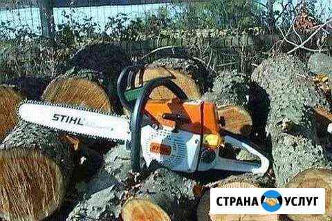 Спиливаем деревья, обрезаем ветви Владикавказ
