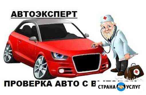 Авто подбор автомобилей Кострома