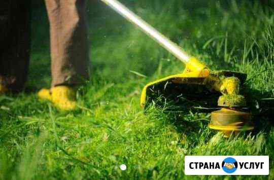 Покос травы, обрезка деревьев Владикавказ