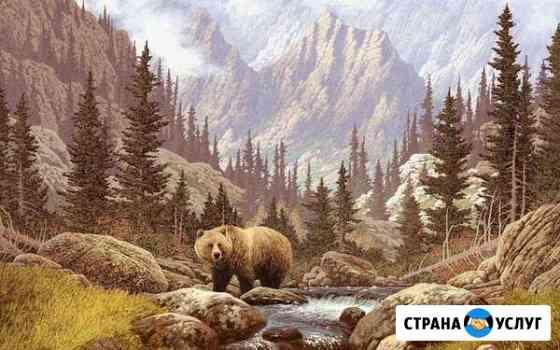 Раскрашу Вашу Картину По Номерам Обнинск
