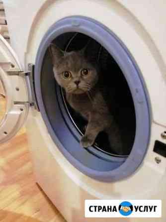 Ремонт стиральных машин, замена подшипников Великий Новгород