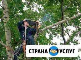 Пилим деревья Каспийск