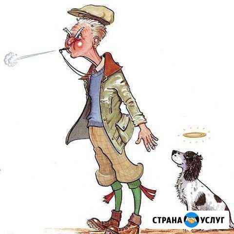Натаска охотничьих собак Астрахань