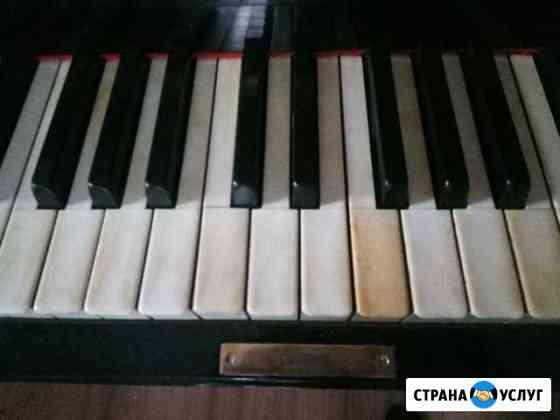 Настройка пианино, ремонт музинструментов Владимир