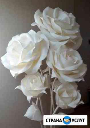 Интерьерные цветы Чебоксары