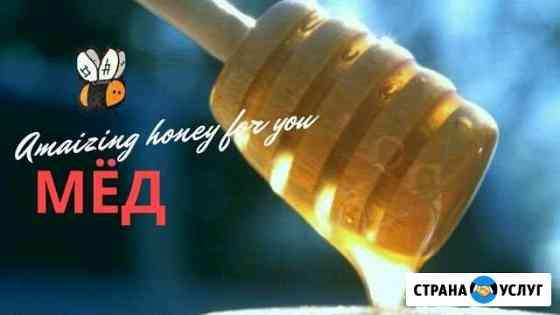 Продам правильный мёд Великий Новгород