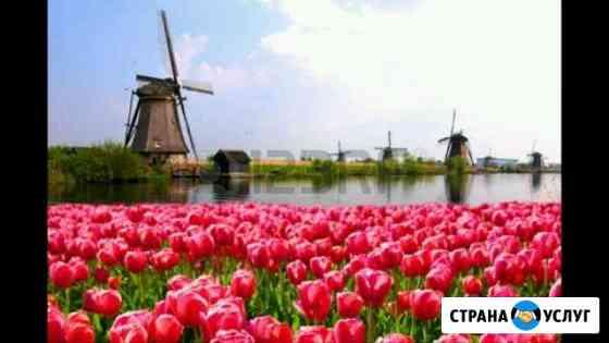 Нидерландский (голландский) язык Грозный