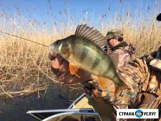 Отдых и рыбалка на берегу реки в Астраханской обл Оранжереи