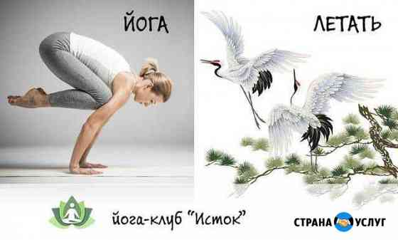 Йога для здоровья Находка
