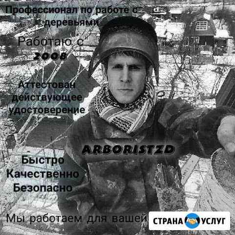Безопасное удаление, спил аварийных деревьев Волжск