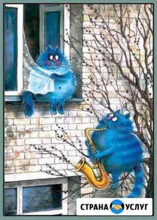 Кастрация котов, кобелей на дому Обнинск, Балабано Обнинск