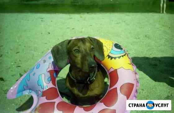 Оцифровка фотопленок, слайдов, фотографий Вологда