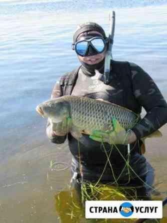 Рыбалка, подводная охота, Станья, Камызяк Камызяк