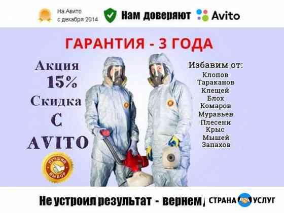 Уничтожение клопов, тараканов, клещей, грызунов Саранск
