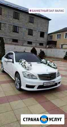 Прокат авто на свадьбу Махачкала