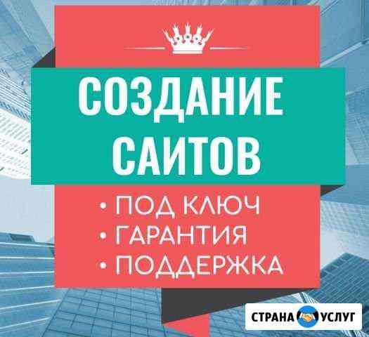 Создание сайтов в Брянске (личная встреча) Брянск