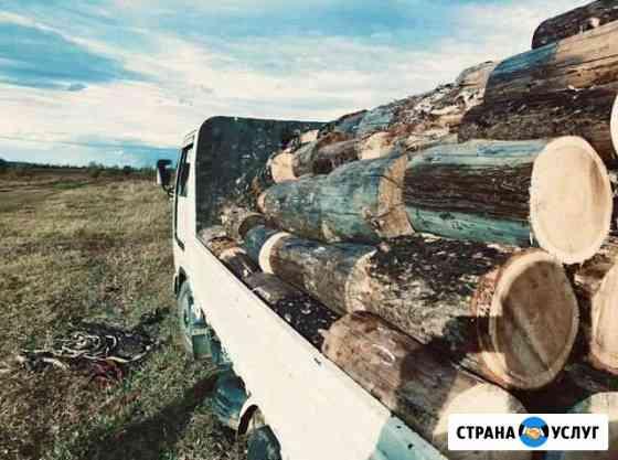 Продам дрова Листвяк Чита