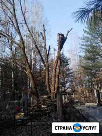 Спил деревьев Биробиджан
