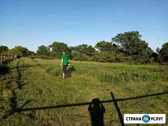 Покос травы Саратов