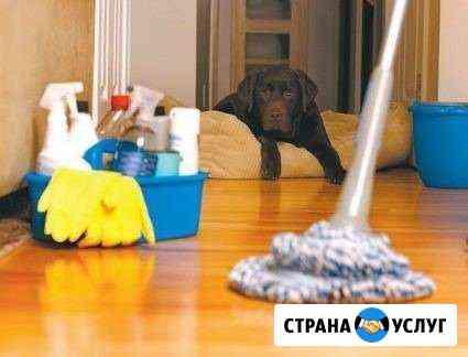 Уборка квартир Кострома